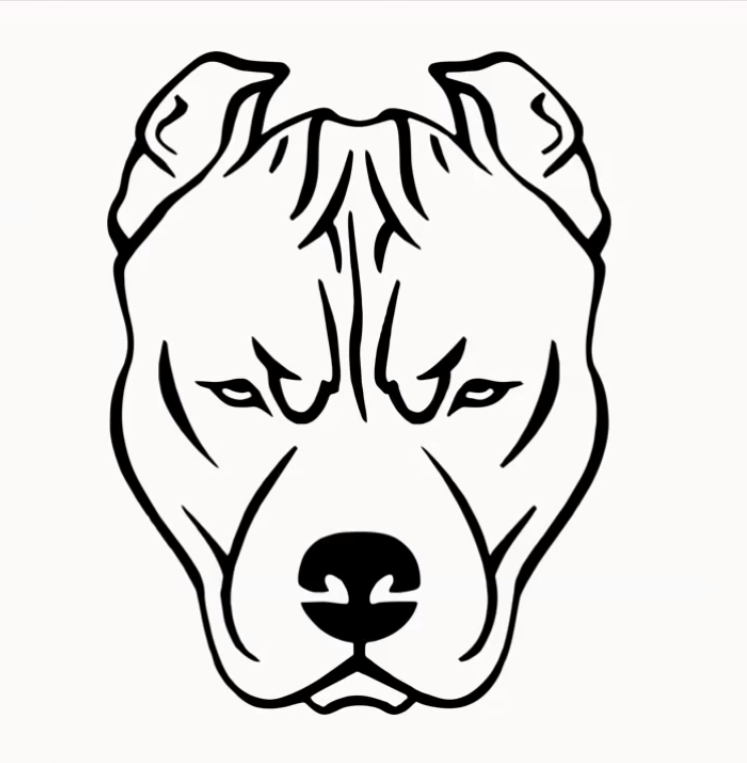 Dog Face Drawing